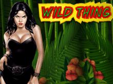 Wild Thing от Novomatic с фриспинами и риск-игрой